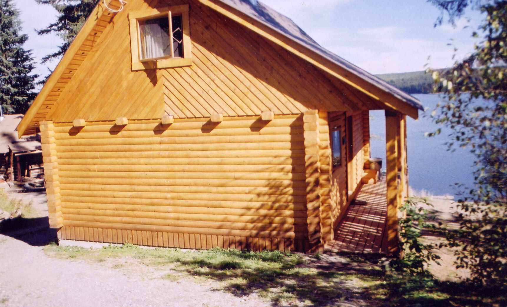 Cabin w/ sleeping loft & log floor beams